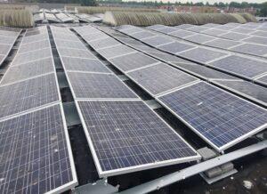 mycie solarów farma fotowoltaiczna